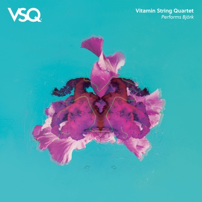 Vitamin String Quartet Performs Björk