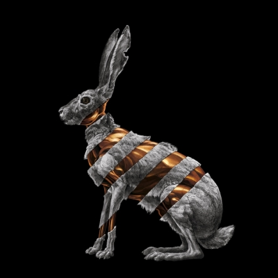 Downtown Records releases San Fermin's 'Jackrabbit'