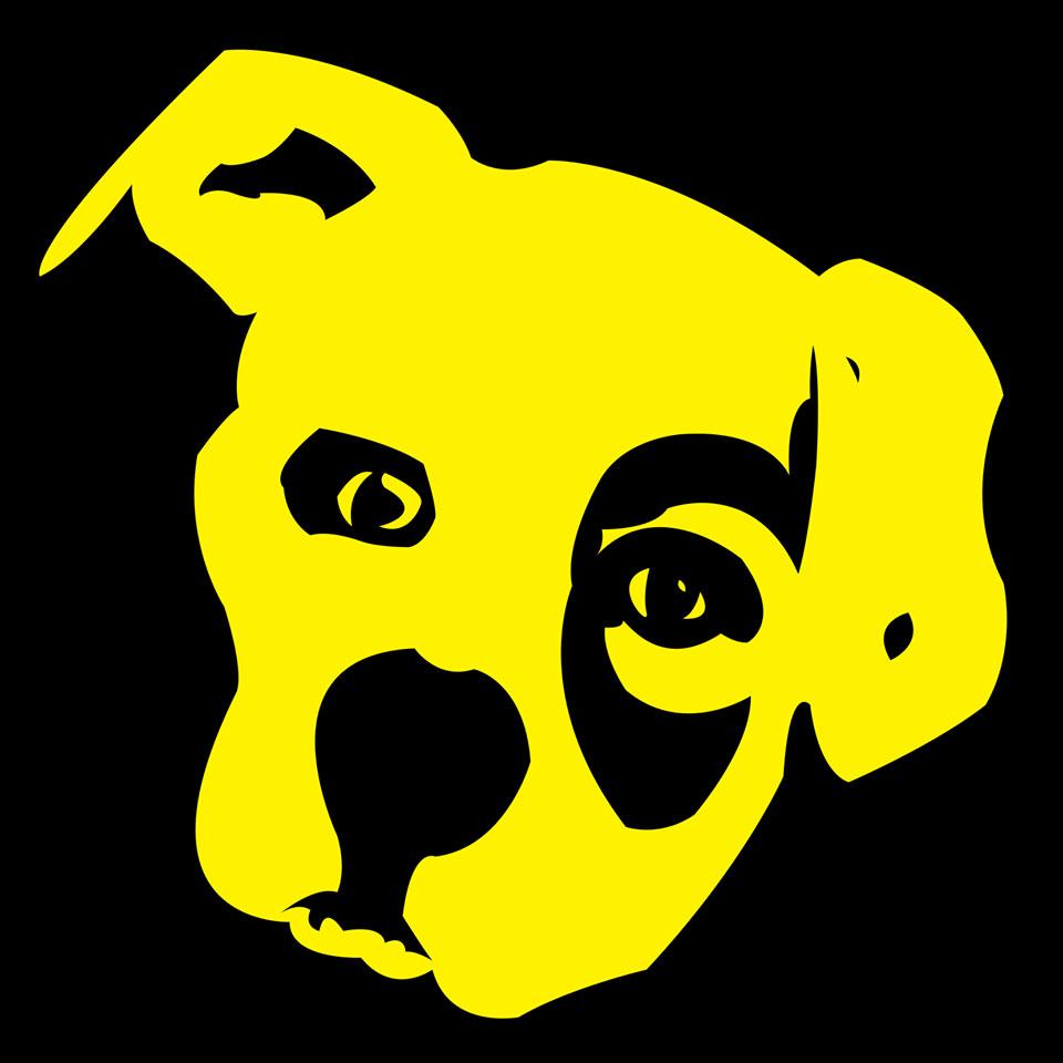 Matt Lindsey Big Yellow Dog